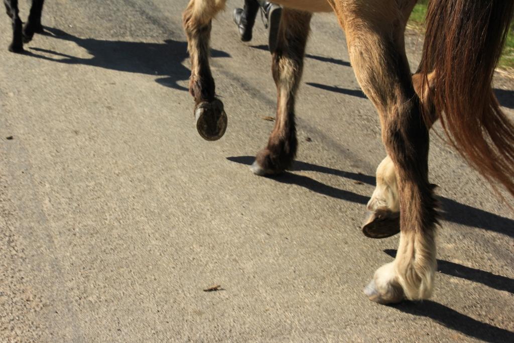 marcher pieds nu